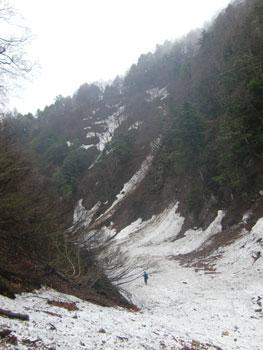 KashimaTengu140506a.jpg