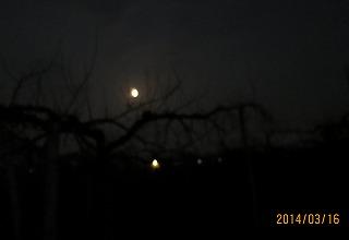 如月の十五夜