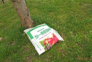 りんご春肥