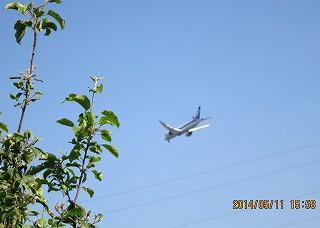 飛行機飛ぶ