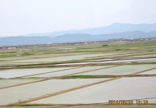 中越のたんぼと新幹線