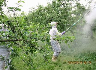 りんご防除採用