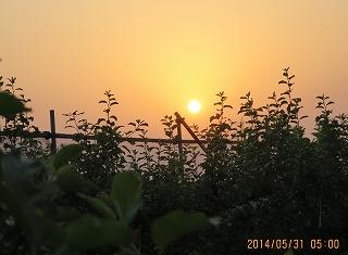 朝5時、日の出