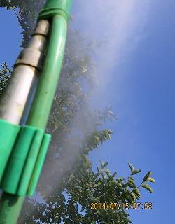 柿防除・採用