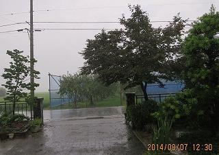 昼は強い雨