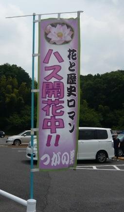 20140621_2 (1)