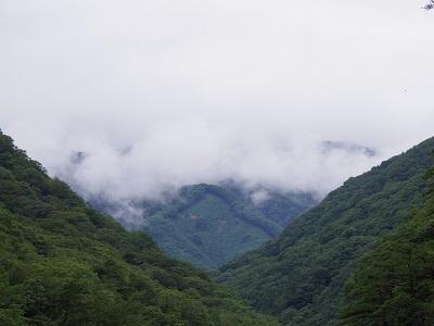 20140817_1 (7)