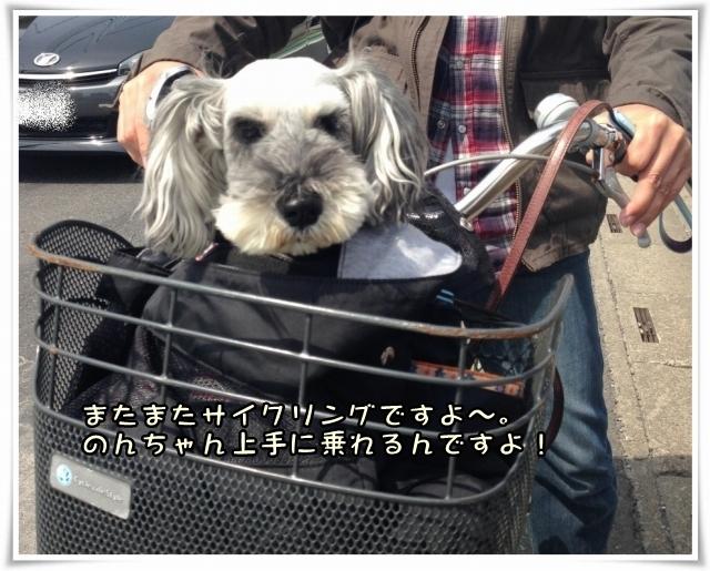 20140414_自転車カゴ