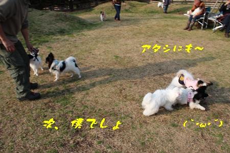 20140202_108b.jpg