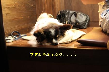 20140615_30b.jpg