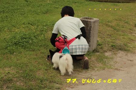 20140706_04b.jpg