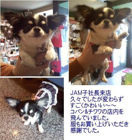 20140408JAM子社長