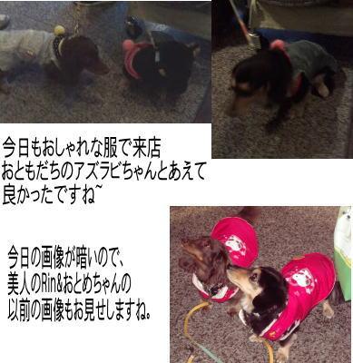 20140415Rインotomechan