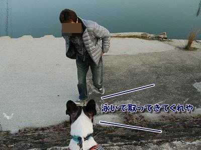 お散歩 (8)
