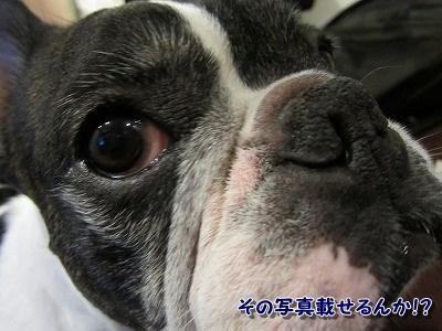 お股 (4)