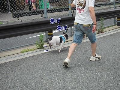道の駅かわはら (1)