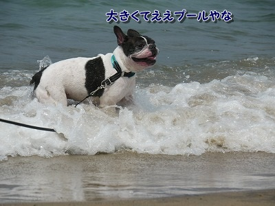 外す (3)