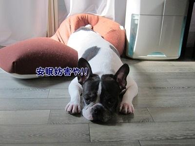 必要 (2)