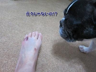 腫れた (4)