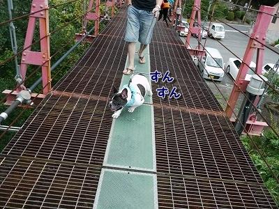 陸橋 (4)