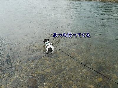 溺れる (3)