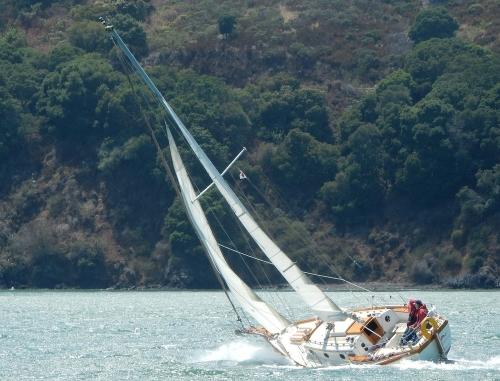 SF Sailing