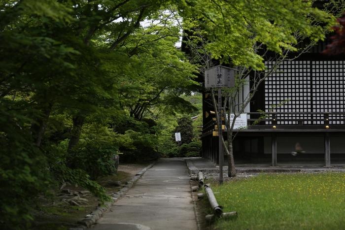 kansyuji1405_03.jpg