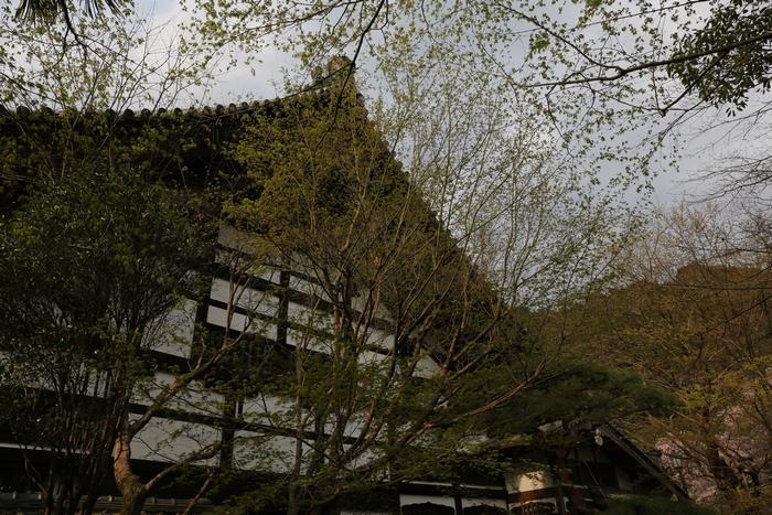 ryoanji1404_04.jpg