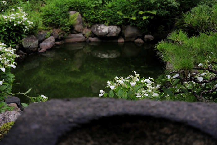 ryosoku1406_08.jpg