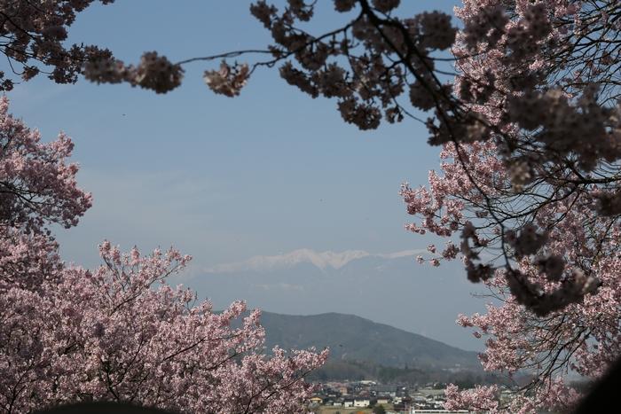 takato1404_07.jpg