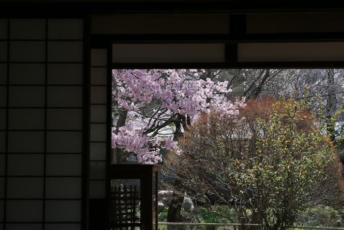 takato1404_09.jpg