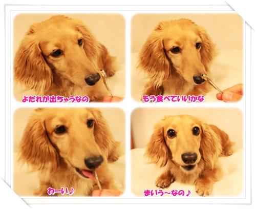 crea140628-3.jpg
