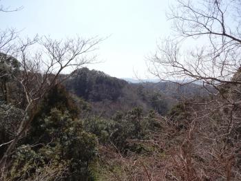 033わかり難いですが、大福山とりました