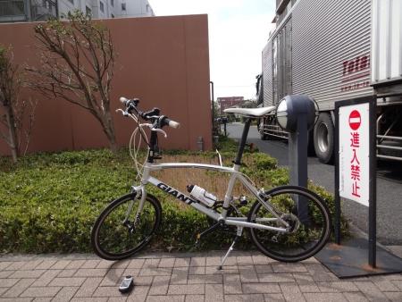 011風も強いためミニベロで桜を見に、出発は午後1時