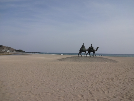 044海岸が砂丘になっています