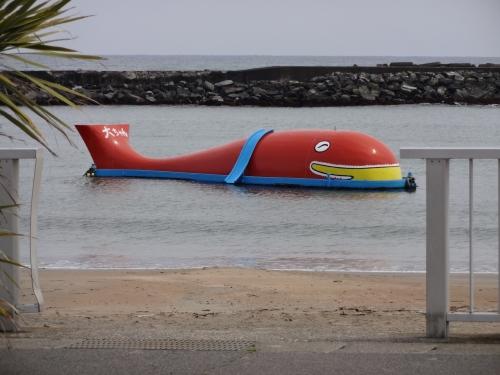 027クジラの大ちゃん、海水浴場だそうな