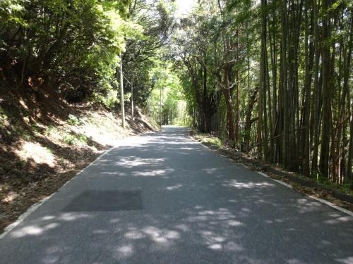 033久留里からこんな自然の中を通り鹿野山を目指します