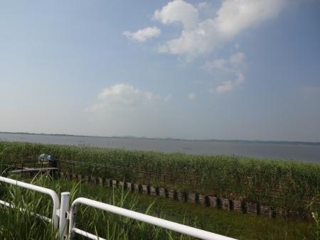 027北印旛沼へ