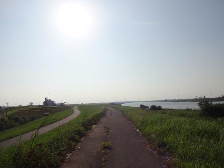 031向かい風の利根川CRから手賀川沿いへ、灼熱の太陽