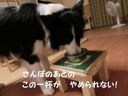 CIMG4652.jpg