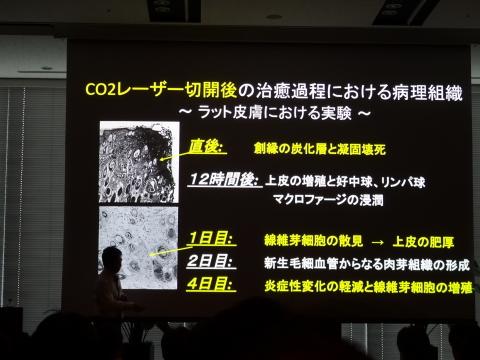 DSC00858.jpg