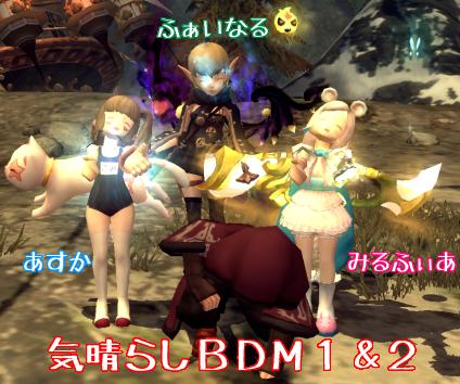 5-14BDM12.png