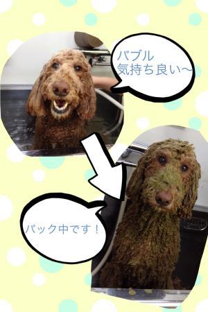 繝ェ繝ウ繧ク繝シ蜈・豬エ_convert_20140317213640