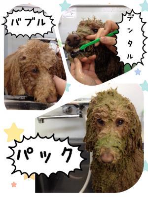繝ェ繝ウ繧ク繝シ蜈・豬エ_convert_20140401005216