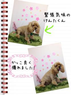 縺代s縺溷菅_convert_20140421210925
