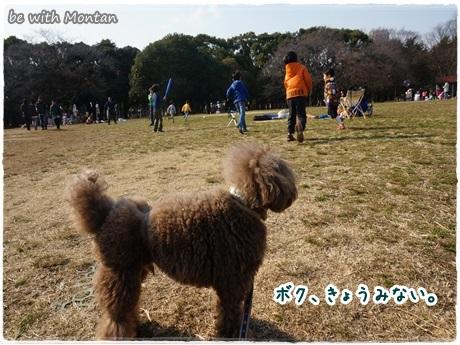 DSC01391-20140314.jpg