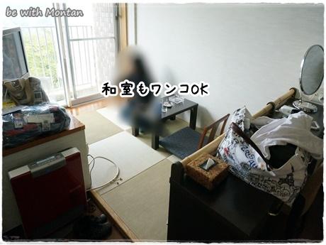 DSC04935-20140710.jpg