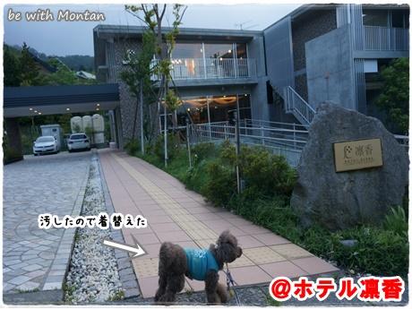 DSC04944-20140710.jpg