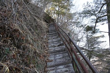 岩古谷山への道は整備が行き届いている