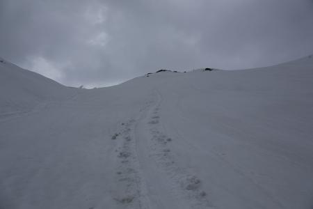 弓折岳の下りは結局シリセード